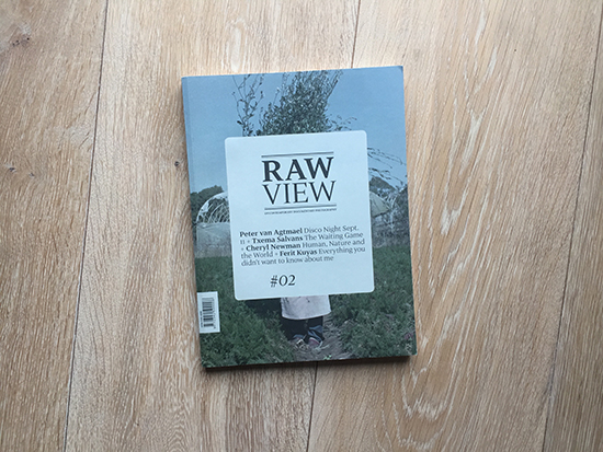 Raw View 02